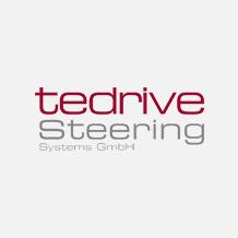 Logo Tedrive Steering