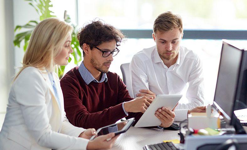 Equipe executando a gestão patrimonial